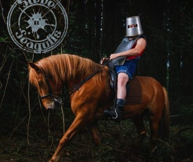 steve'n'seagulls,brothers in farm
