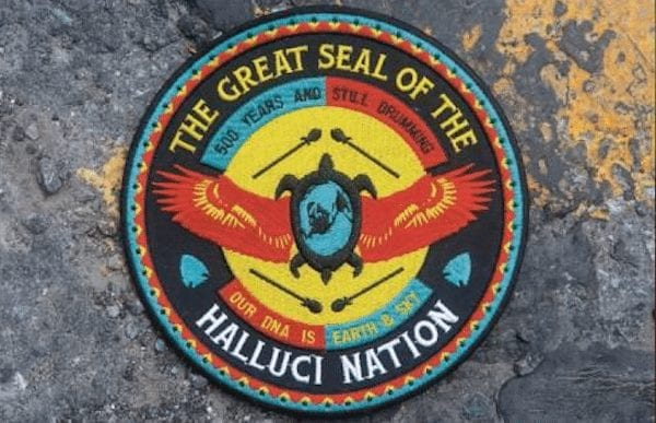 We Are the Halluci Nation