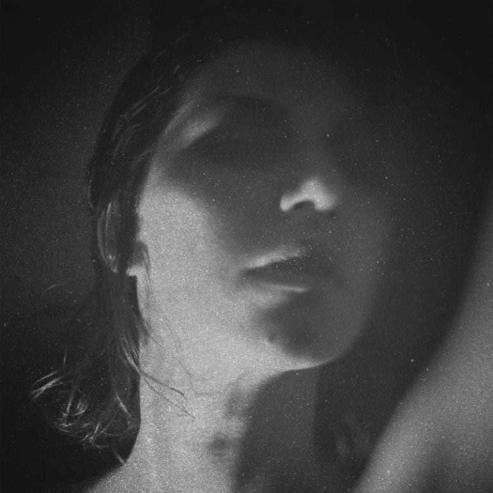 Aldous Harding, Party, cover