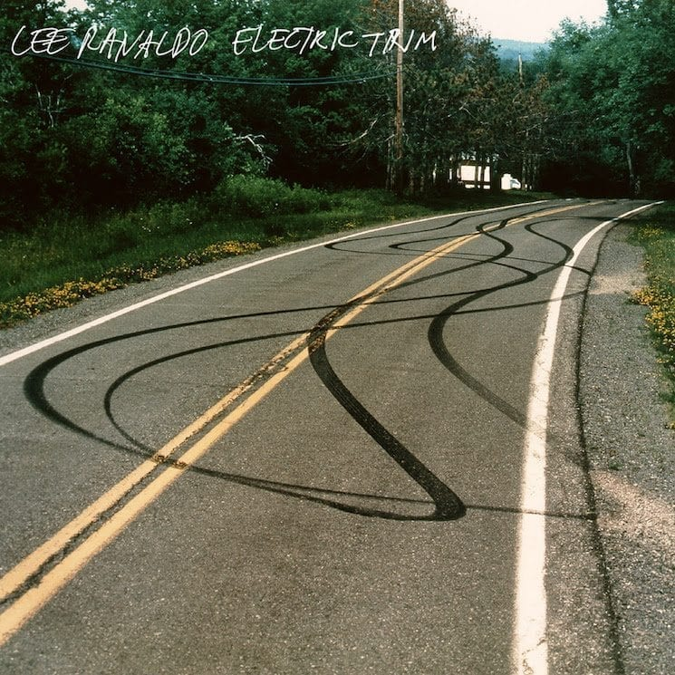 lee ranaldo,electric trim