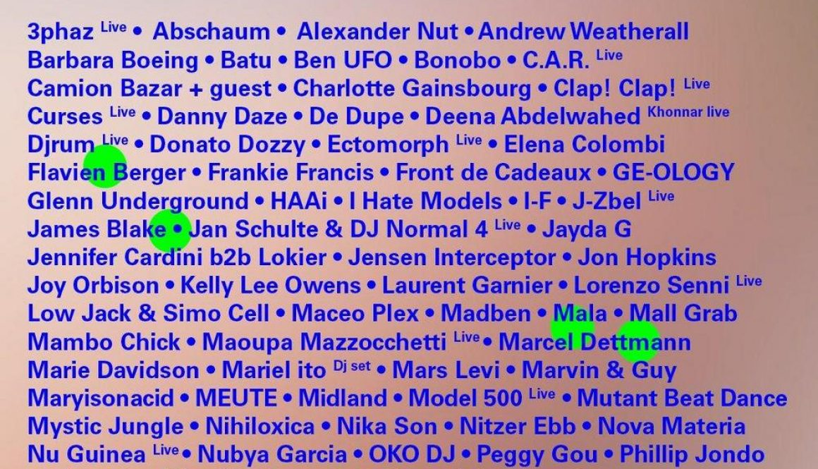 nuits-sonores-2019-20190221135718